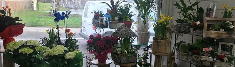Votre fleuriste compose des aménagements floraux à Outreau
