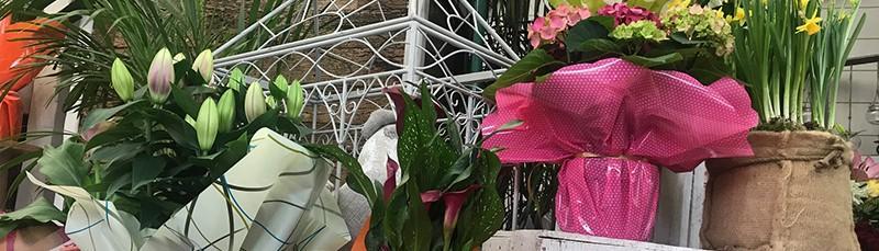 Fleuriste pour événéments à Outreau